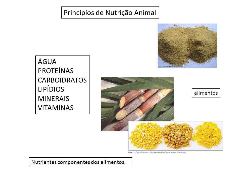 Princípios de Nutrição Animal Nutrientes componentes dos alimentos.