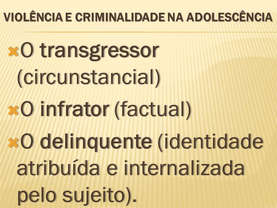 VIOLÊNCIA E CRIMINALIDADE NA ADOLESCÊNCIA O transgressor (circunstancial) O transgressor (circunstancial) O infrator (factual) O infrator (factual) O