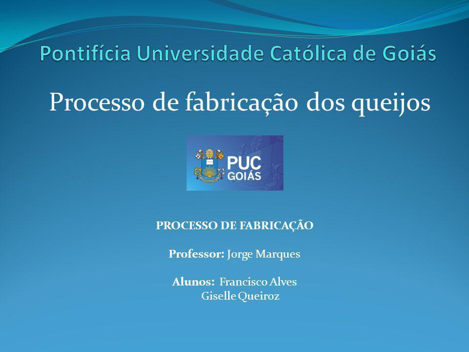 Processo de fabricação dos queijos PROCESSO DE FABRICAÇÃO Professor: Jorge Marques Alunos:Francisco Alves Giselle Queiroz Goiânia, 26 de maio de 2011
