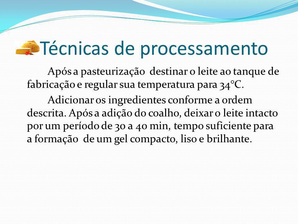 Técnicas de processamento Após a pasteurização destinar o leite ao tanque de fabricação e regular sua temperatura para 34°C. Adicionar os ingredientes