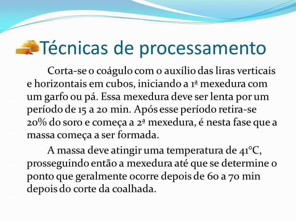 Técnicas de processamento Corta-se o coágulo com o auxílio das liras verticais e horizontais em cubos, iniciando a 1ª mexedura com um garfo ou pá. Ess