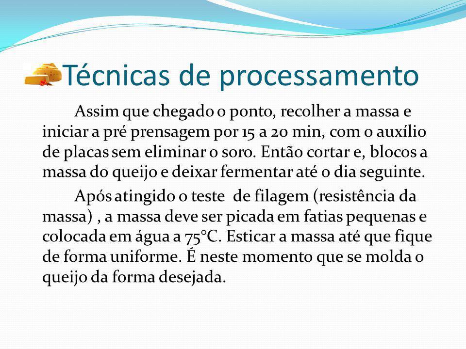 Técnicas de processamento Assim que chegado o ponto, recolher a massa e iniciar a pré prensagem por 15 a 20 min, com o auxílio de placas sem eliminar
