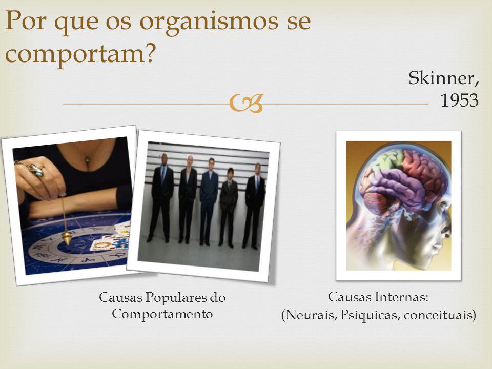 Skinner, 1953 Por que os organismos se comportam? Causas Populares do Comportamento Causas Internas: (Neurais, Psiquicas, conceituais)