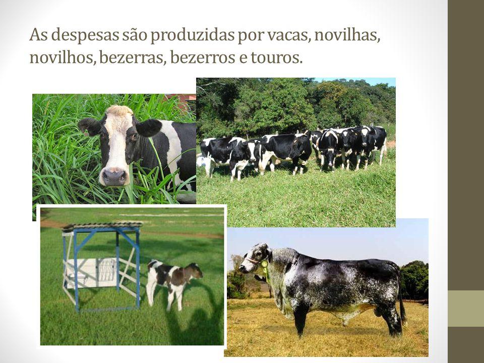 Caracterização de uma propriedade leiteira: Área: 4 alqueires (20 hectares) (Pastejo rotacionado + cana/uréia ou silagem de milho) R$ 200.000,00 Rebanho: 50 vacas + 50 bezerras e novilhas (125.000,00 + 75.000,00) R$ 200.000,00 Benfeitorias e equipamentos: 1 sala de ordenha e o equipamento de ordenha mecânica.