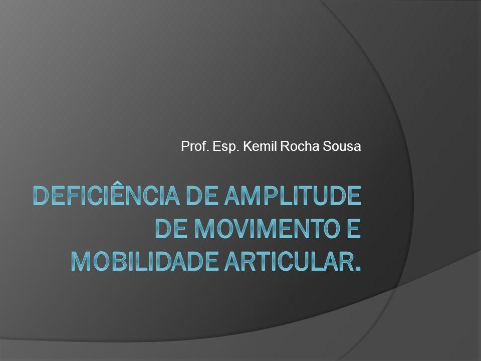 Prof. Esp. Kemil Rocha Sousa