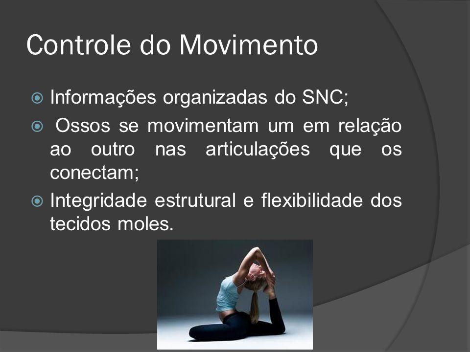 Controle do Movimento Informações organizadas do SNC; Ossos se movimentam um em relação ao outro nas articulações que os conectam; Integridade estrutu