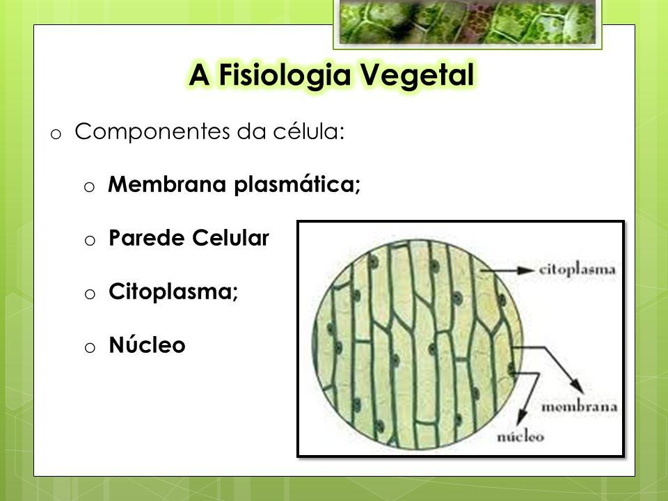 o Componentes da célula: o Membrana plasmática; o Parede Celular o Citoplasma; o Núcleo