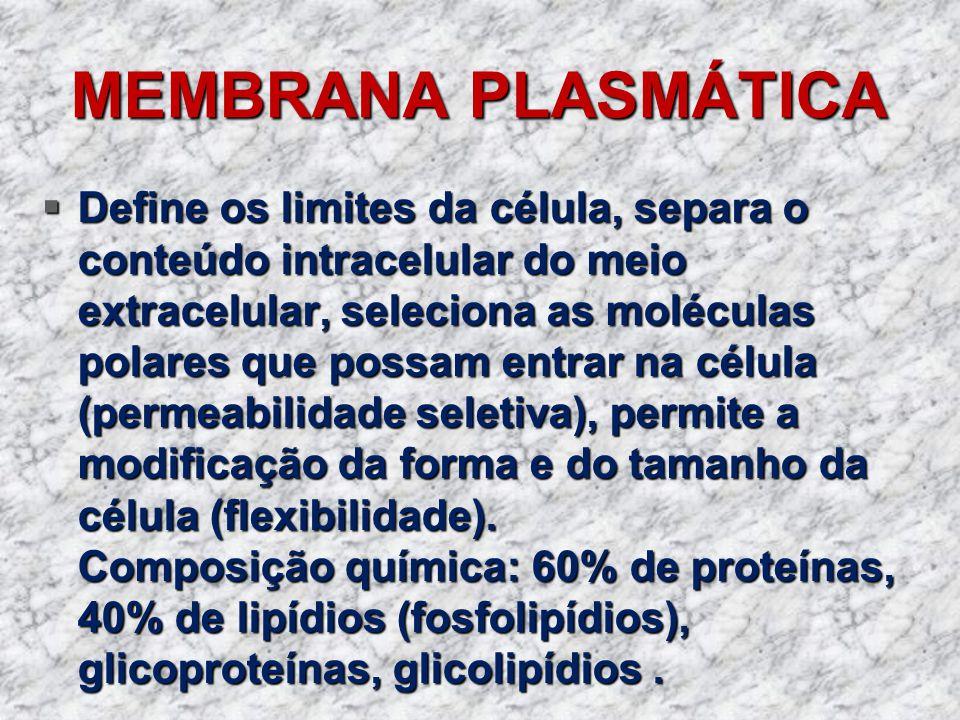 MEMBRANA PLASMÁTICA Define os limites da célula, separa o conteúdo intracelular do meio extracelular, seleciona as moléculas polares que possam entrar