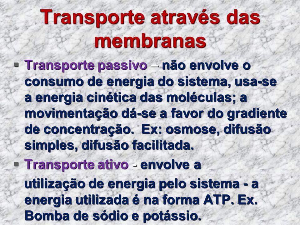 Transporte através das membranas Transporte passivo – não envolve o consumo de energia do sistema, usa-se a energia cinética das moléculas; a moviment