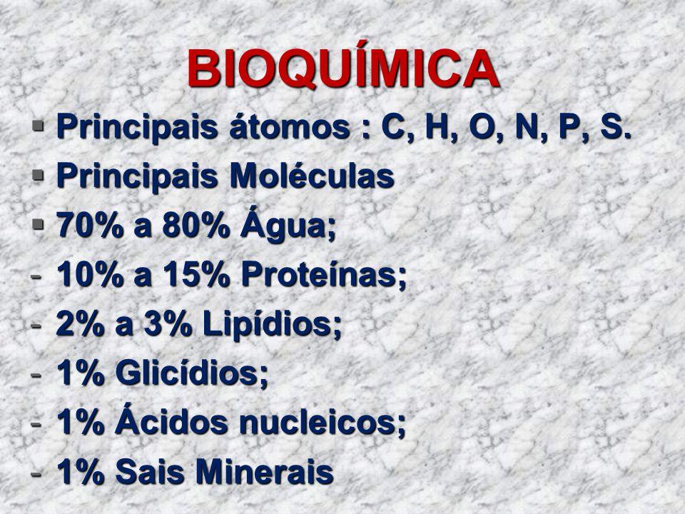 BIOQUÍMICA Principais átomos : C, H, O, N, P, S. Principais átomos : C, H, O, N, P, S. Principais Moléculas Principais Moléculas 70% a 80% Água; 70% a