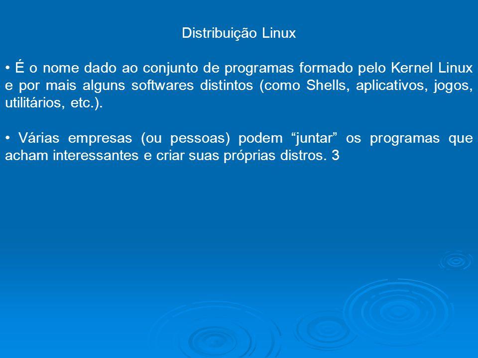 Distribuição Linux É o nome dado ao conjunto de programas formado pelo Kernel Linux e por mais alguns softwares distintos (como Shells, aplicativos, j