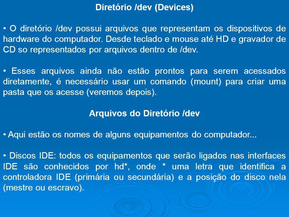Diretório /dev (Devices) O diretório /dev possui arquivos que representam os dispositivos de hardware do computador. Desde teclado e mouse até HD e gr