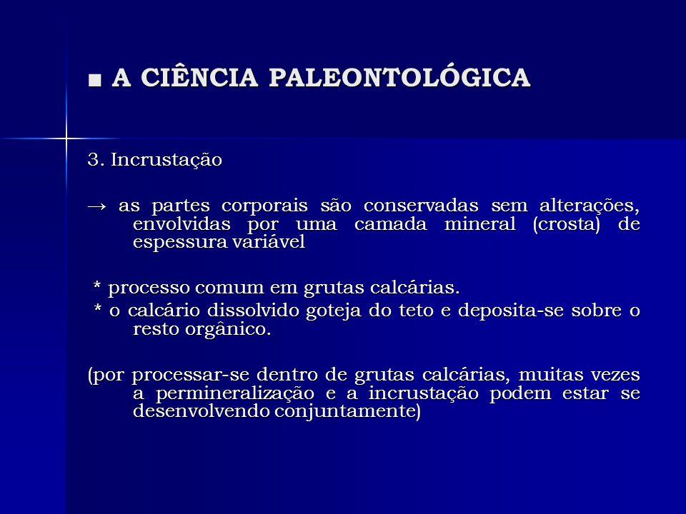 A CIÊNCIA PALEONTOLÓGICA A CIÊNCIA PALEONTOLÓGICA 3. Incrustação as partes corporais são conservadas sem alterações, envolvidas por uma camada mineral