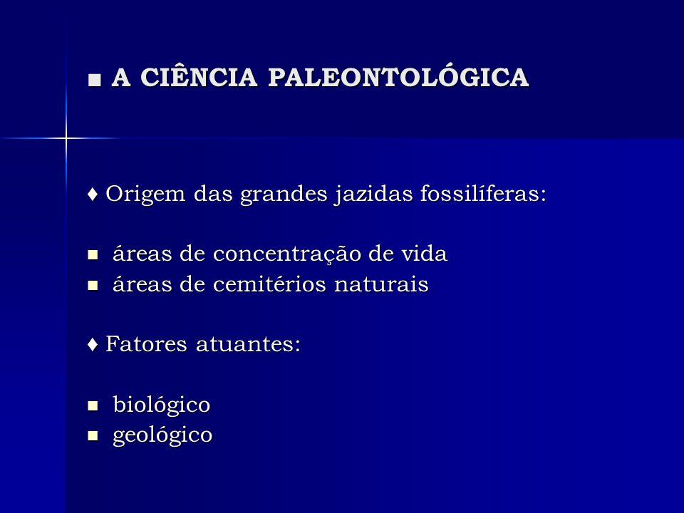 A CIÊNCIA PALEONTOLÓGICA A CIÊNCIA PALEONTOLÓGICA Fases de formação das jazidas fossilíferas: Fases de formação das jazidas fossilíferas: 1.