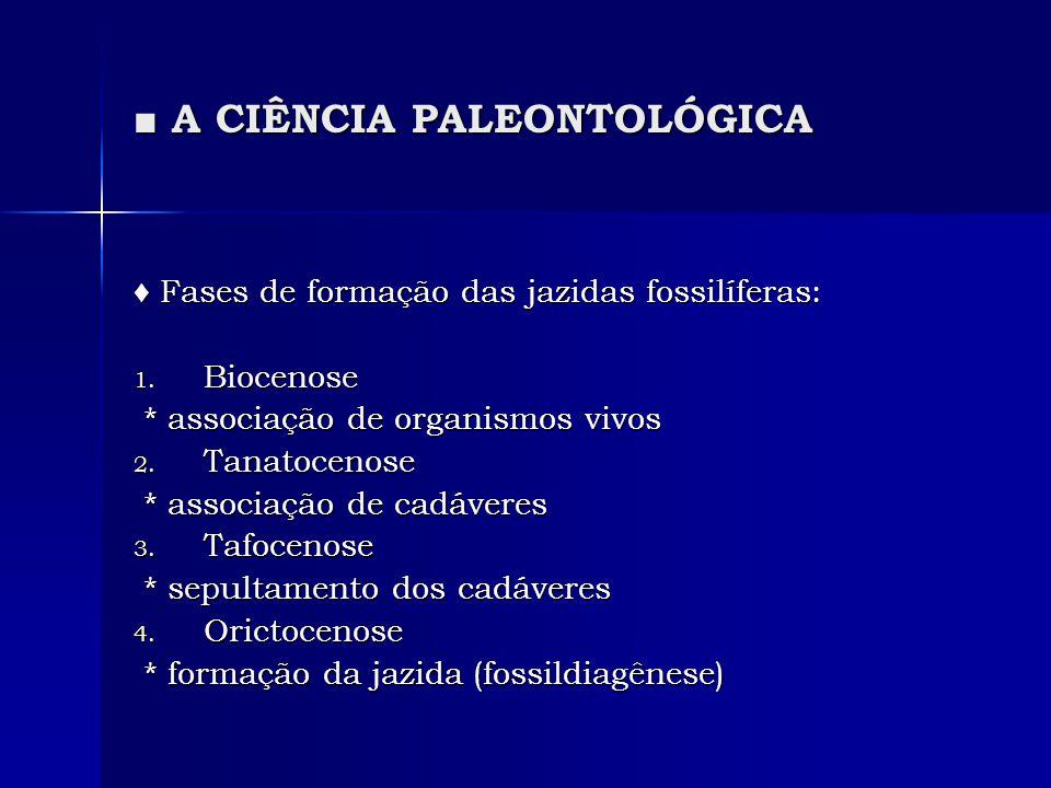 A CIÊNCIA PALEONTOLÓGICA A CIÊNCIA PALEONTOLÓGICA A coleta dos fósseis: A coleta dos fósseis: o encontro dos fósseis costuma ser não intencional o encontro dos fósseis costuma ser não intencional * em escavações.