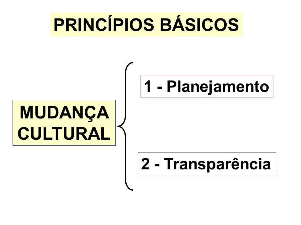 PRINCÍPIOS BÁSICOS 1 - Planejamento 2 - Transparência MUDANÇA CULTURAL