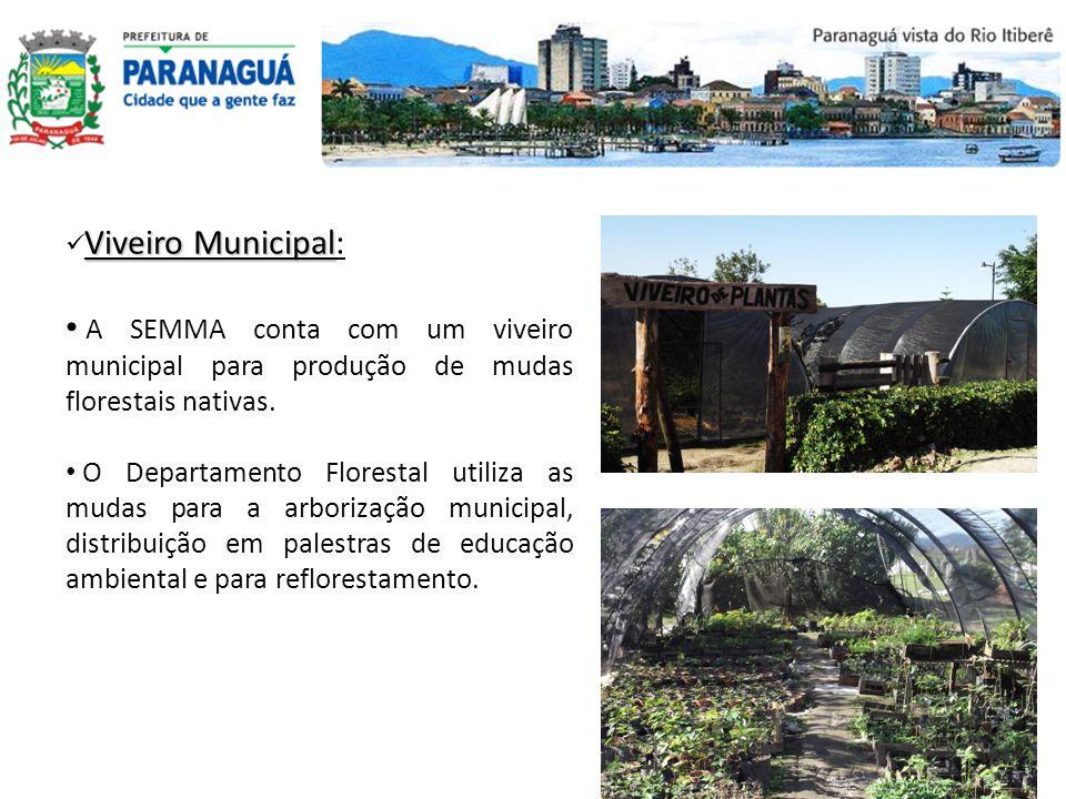 Viveiro Municipal Viveiro Municipal: A SEMMA conta com um viveiro municipal para produção de mudas florestais nativas. O Departamento Florestal utiliz