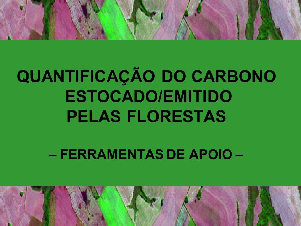 CADA FORMAÇÃO FLORESTAL (natural ou não) possui uma determinada capacidade em fixação o carbono da atmosfera através da fotossíntese.