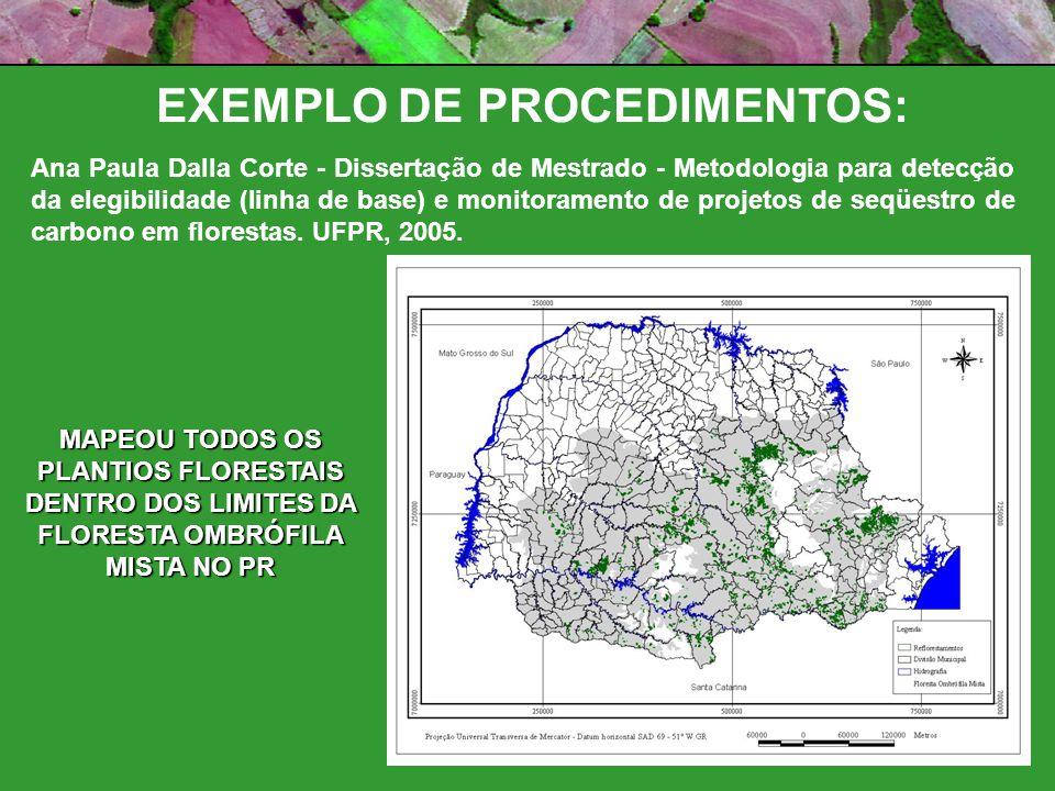 EXEMPLO DE PROCEDIMENTOS: Ana Paula Dalla Corte - Dissertação de Mestrado - Metodologia para detecção da elegibilidade (linha de base) e monitoramento de projetos de seqüestro de carbono em florestas.