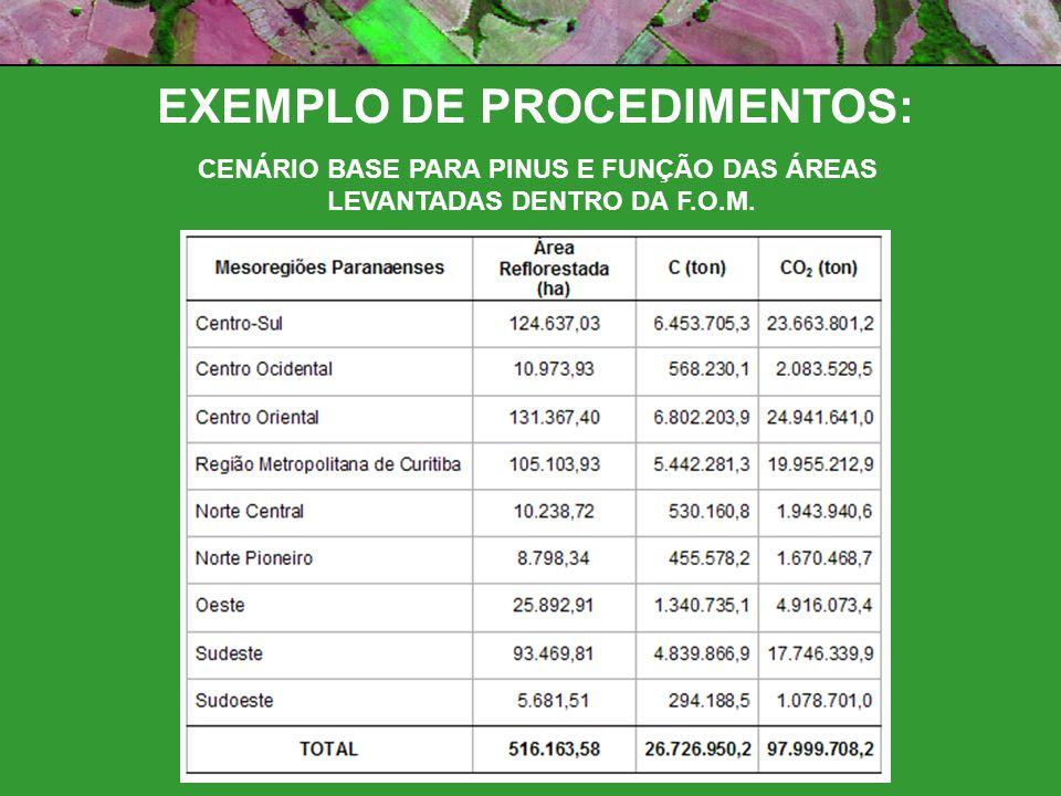 EXEMPLO DE PROCEDIMENTOS: CENÁRIO BASE PARA PINUS E FUNÇÃO DAS ÁREAS LEVANTADAS DENTRO DA F.O.M.