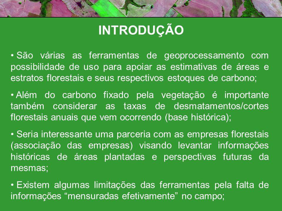 CONSIDERAÇÕES FLORESTAS NATIVAS PLANTIOS Ano Base (2005 – 2006?) Fonte de informação Dinâmico.