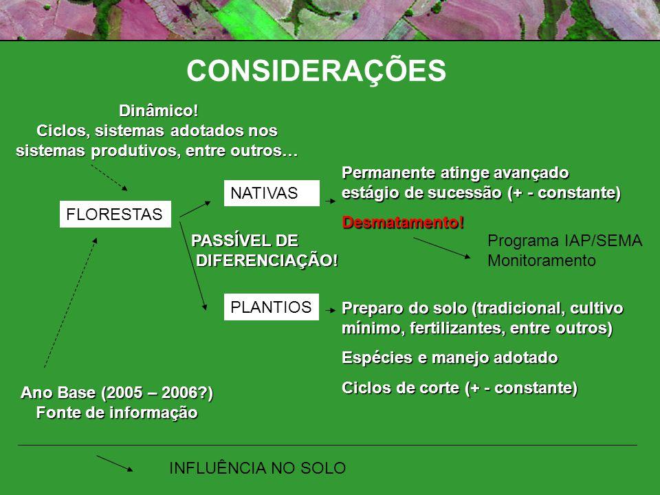 CONSIDERAÇÕES Áreas Florestais Florestas NativasPlantios Florestais Particulares (Física/Jurídica) RL APPs Áreas de Conservação Particulares (Física/Jurídica) SEPARAÇÃO VIA SENSORIAMENTO REMOTO