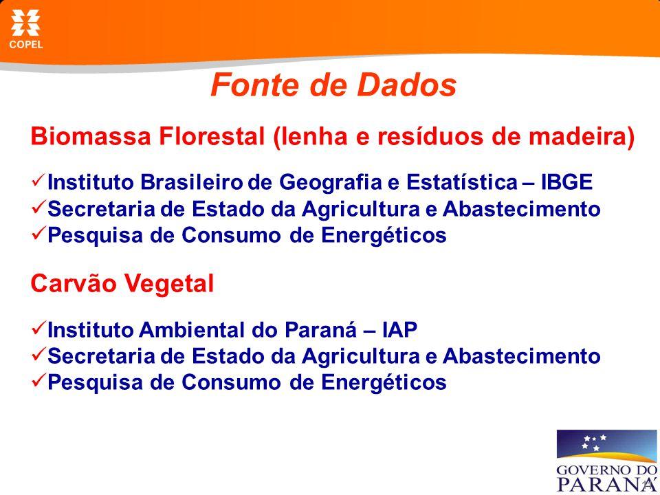 11 Fonte de Dados Biomassa Florestal (lenha e resíduos de madeira) Instituto Brasileiro de Geografia e Estatística – IBGE Secretaria de Estado da Agricultura e Abastecimento Pesquisa de Consumo de Energéticos Carvão Vegetal Instituto Ambiental do Paraná – IAP Secretaria de Estado da Agricultura e Abastecimento Pesquisa de Consumo de Energéticos