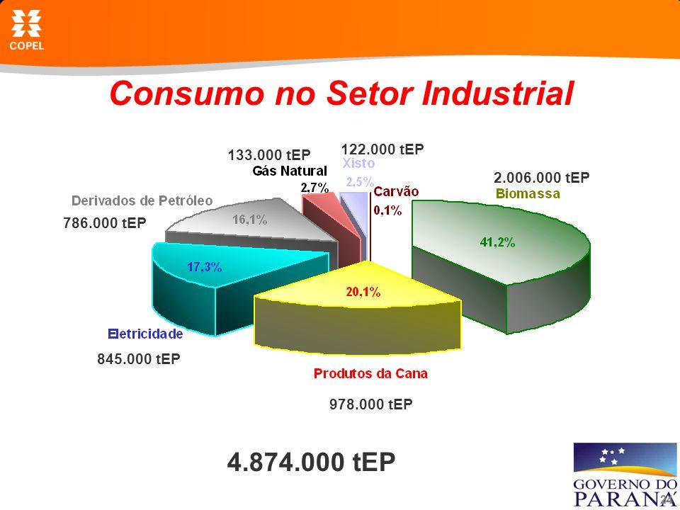 24 Consumo no Setor Industrial 4.874.000 tEP 2.006.000 tEP 978.000 tEP 845.000 tEP 786.000 tEP 133.000 tEP 122.000 tEP