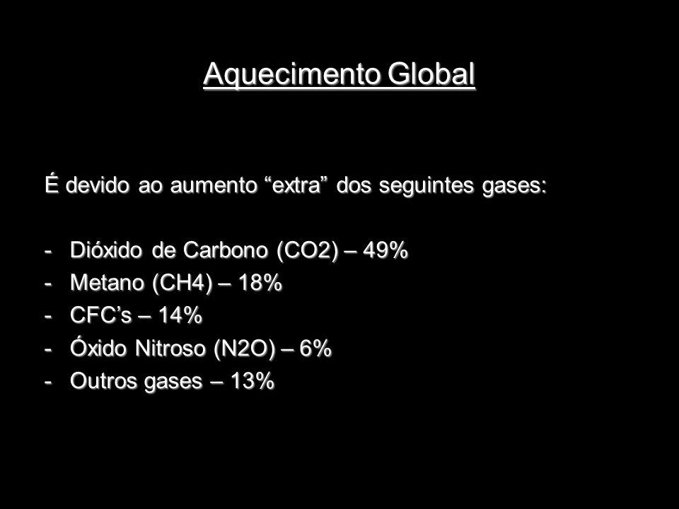 Aquecimento Global É devido ao aumento extra dos seguintes gases: -Dióxido de Carbono (CO2) – 49% -Metano (CH4) – 18% -CFCs – 14% -Óxido Nitroso (N2O)