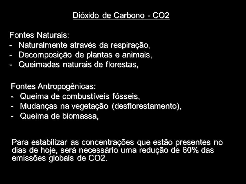 Metano – NH4 Fontes Naturais: -Decomposição de plantas e animais, Oxido Nitroso – N2O Fontes Naturais: -Decomposição do nitrogênio, Fontes Antropogênicas: -Criação de gado, -Produção de petróleo.