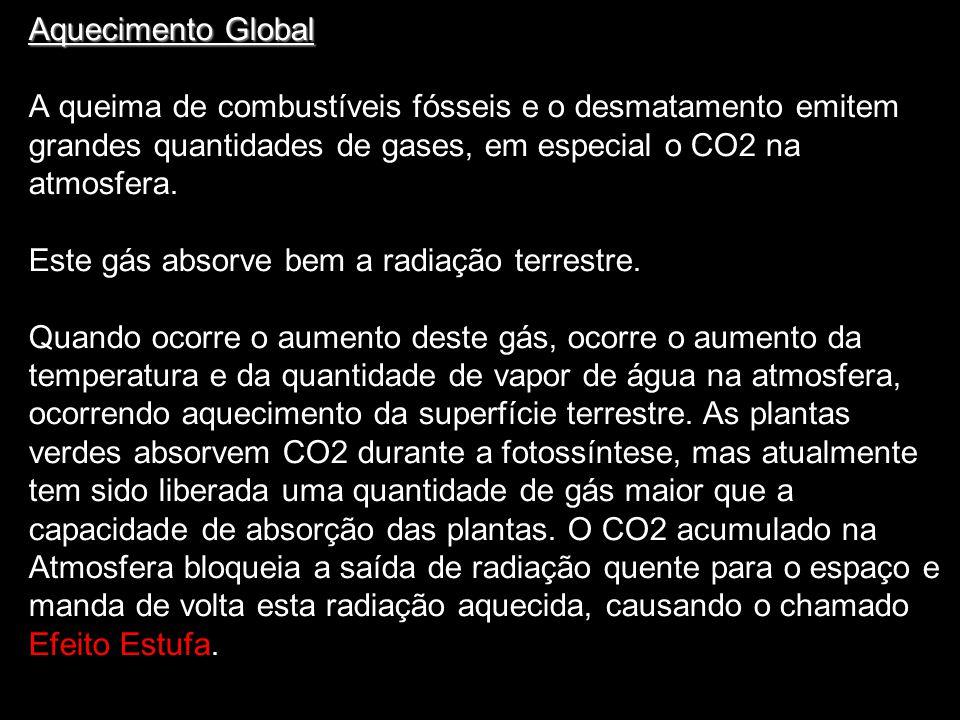 Aquecimento Global A queima de combustíveis fósseis e o desmatamento emitem grandes quantidades de gases, em especial o CO2 na atmosfera. Este gás abs
