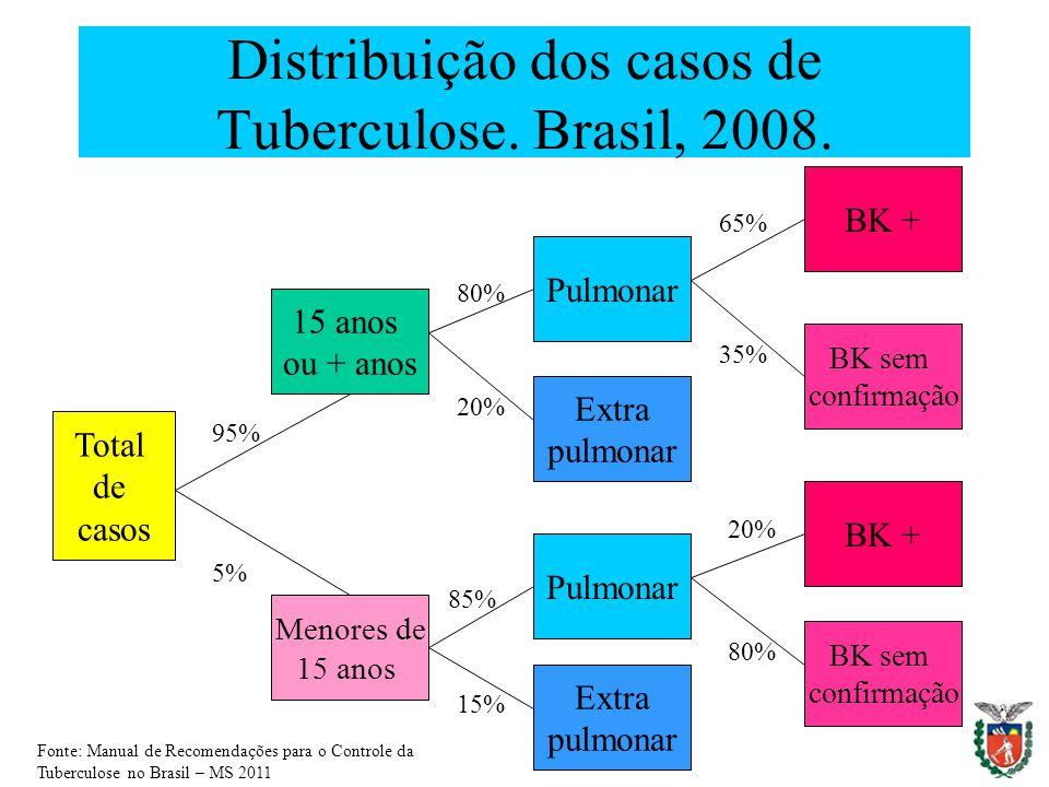 Distribuição dos casos de Tuberculose. Brasil, 2008. Total de casos 15 anos ou + anos Menores de 15 anos Pulmonar Extra pulmonar Pulmonar Extra pulmon