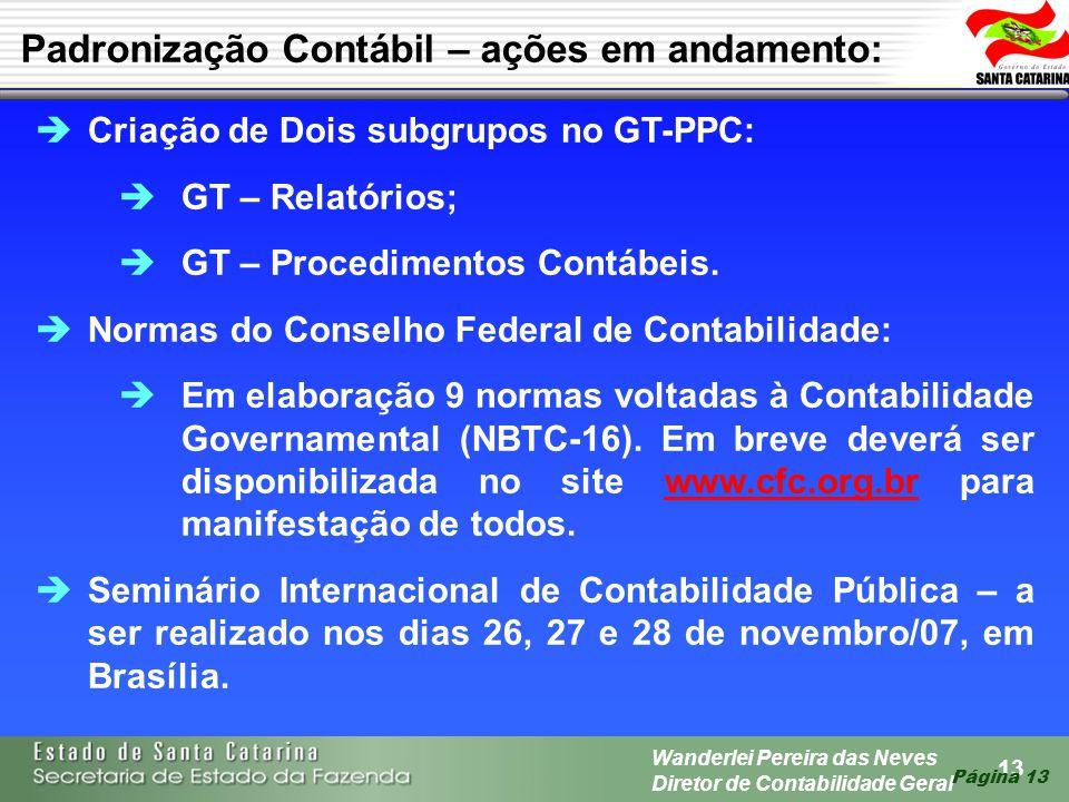 13 Wanderlei Pereira das Neves Diretor de Contabilidade Geral Página 13 Criação de Dois subgrupos no GT-PPC: GT – Relatórios; GT – Procedimentos Contá