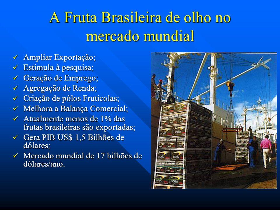 A Fruta Brasileira de olho no mercado mundial Ampliar Exportação; Ampliar Exportação; Estimula à pesquisa; Estimula à pesquisa; Geração de Emprego; Ge