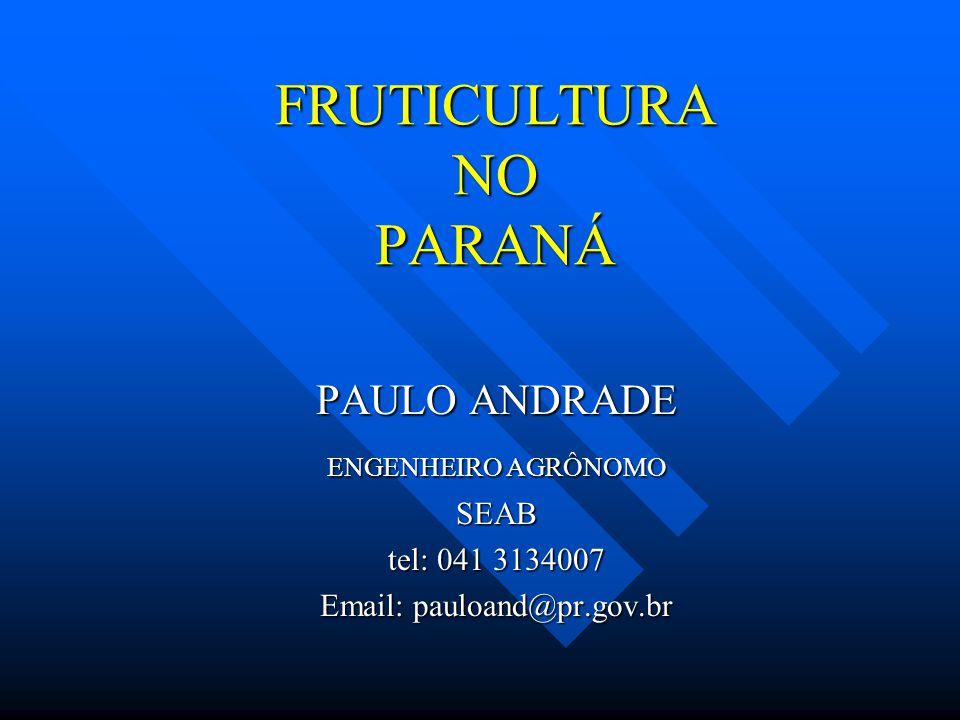 FRUTICULTURA NO PARANÁ PAULO ANDRADE ENGENHEIRO AGRÔNOMO SEAB tel: 041 3134007 Email: pauloand@pr.gov.br