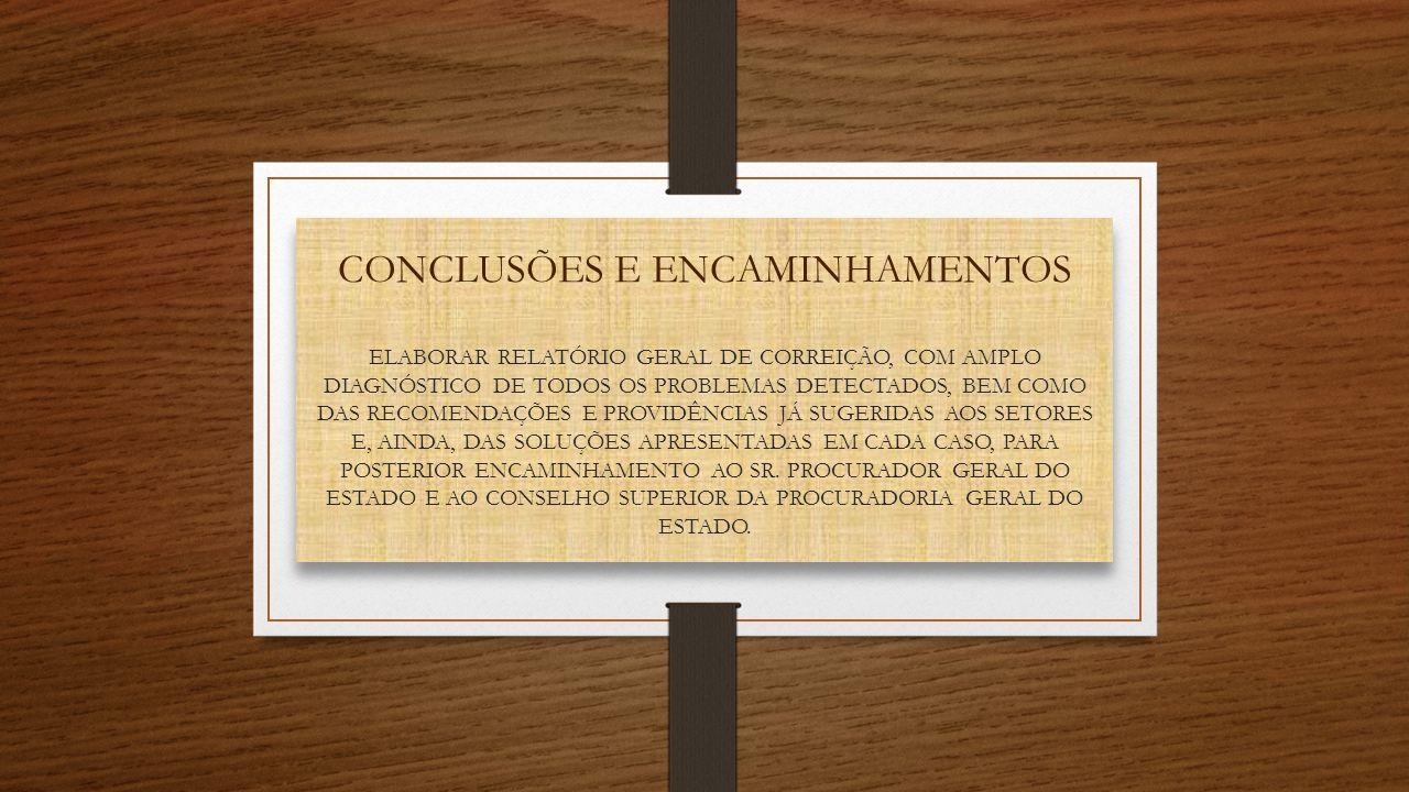 CONCLUSÕES E ENCAMINHAMENTOS ELABORAR RELATÓRIO GERAL DE CORREIÇÃO, COM AMPLO DIAGNÓSTICO DE TODOS OS PROBLEMAS DETECTADOS, BEM COMO DAS RECOMENDAÇÕES