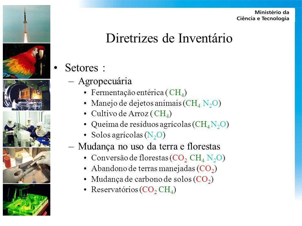 Diretrizes de Inventário Setores : –Agropecuária Fermentação entérica ( CH 4 ) Manejo de dejetos animais (CH 4 N 2 O) Cultivo de Arroz ( CH 4 ) Queima de resíduos agrícolas (CH 4 N 2 O) Solos agrícolas (N 2 O) –Mudança no uso da terra e florestas Conversão de florestas (CO 2 CH 4 N 2 O) Abandono de terras manejadas (CO 2 ) Mudança de carbono de solos (CO 2 ) Reservatórios (CO 2 CH 4 )