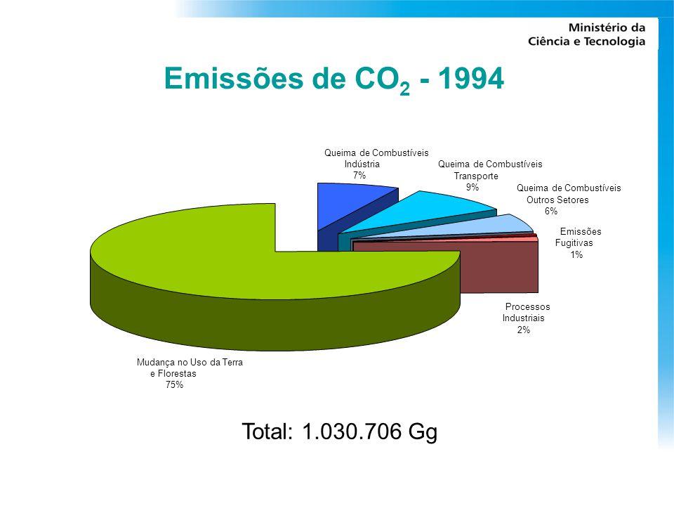 Emissões de CO 2 - 1994 Mudança no Uso da Terra e Florestas 75% Emissões Fugitivas 1% Processos Industriais 2% Queima de Combustíveis Outros Setores 6% Queima de Combustíveis Transporte 9% Queima de Combustíveis Indústria 7% Total: 1.030.706 Gg