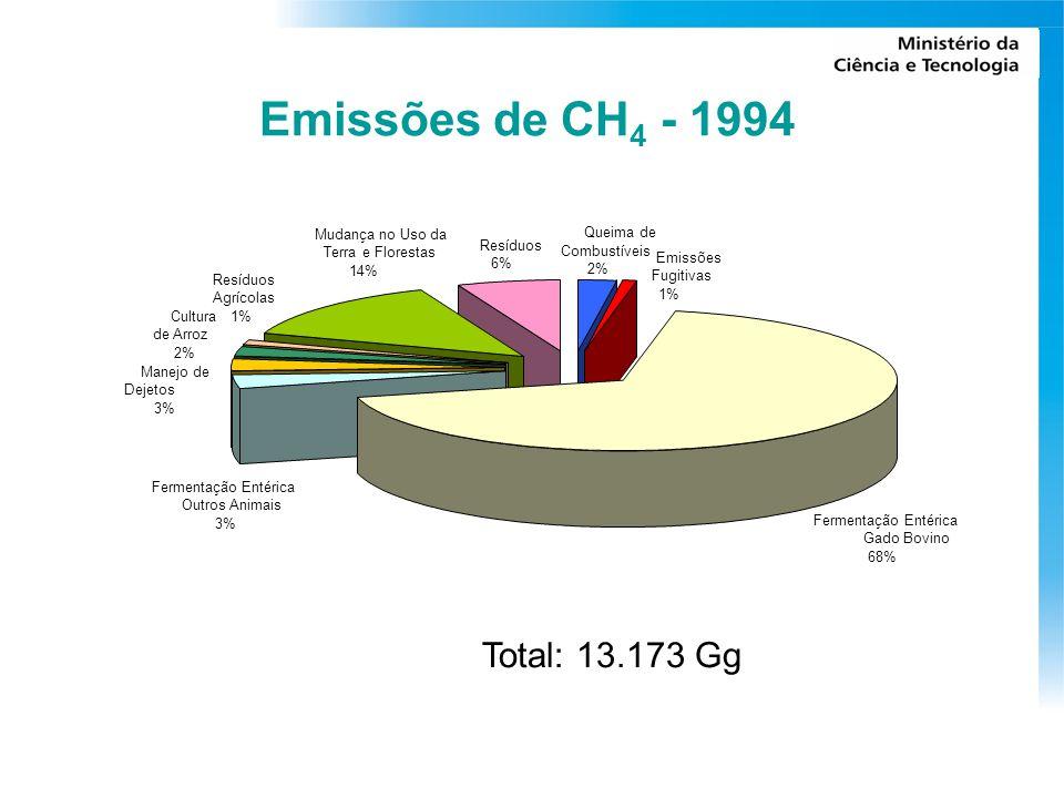 Emissões de CH 4 - 1994 Fermentação Entérica Gado Bovino 68% Manejo de Dejetos 3% Cultura de Arroz 2% Resíduos Agrícolas 1% Mudança no Uso da Terra e Florestas 14% Resíduos 6% Queima de Combustíveis 2% Emissões Fugitivas 1% Fermentação Entérica Outros Animais 3% Total: 13.173 Gg