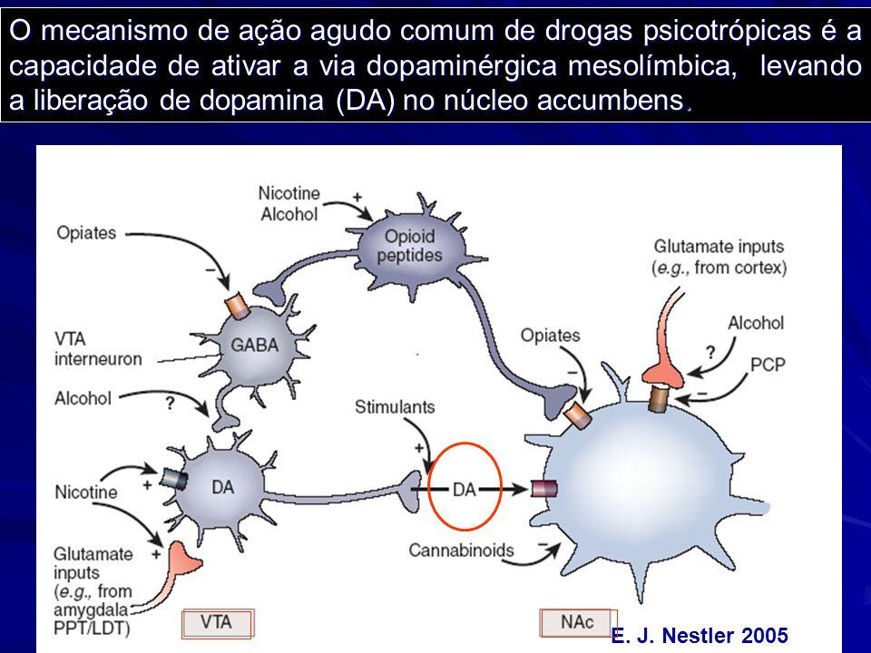 E. J. Nestler 2005 O mecanismo de ação agudo comum de drogas psicotrópicas é a capacidade de ativar a via dopaminérgica mesolímbica, levando a liberaç