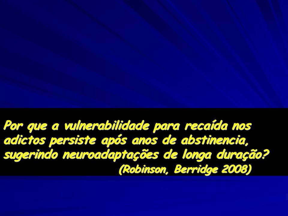 Por que a vulnerabilidade para recaída nos adictos persiste após anos de abstinencia, sugerindo neuroadaptações de longa duração? (Robinson, Berridge