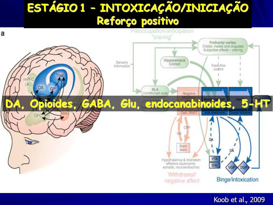 Koob et al., 2009 ESTÁGIO1 – INTOXICAÇÃO/INICIAÇÃO ESTÁGIO 1 – INTOXICAÇÃO/INICIAÇÃO Reforço positivo DA, Opioides, GABA, Glu, endocanabinoides, 5-HT