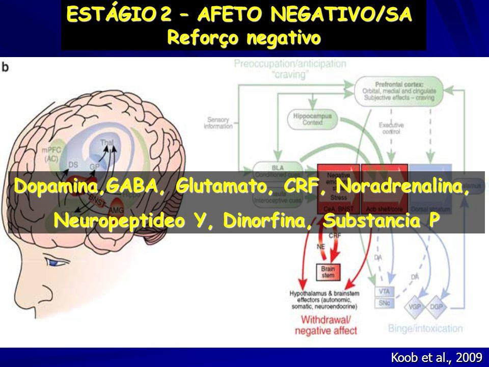Koob et al., 2009 ESTÁGIO2 – AFETO NEGATIVO/SA ESTÁGIO 2 – AFETO NEGATIVO/SA Reforço negativo Dopamina,GABA, Glutamato, CRF, Noradrenalina, Neuropepti