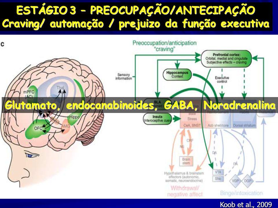 Koob et al., 2009 ESTÁGIO3 – PREOCUPAÇÃO/ANTECIPAÇÃO ESTÁGIO 3 – PREOCUPAÇÃO/ANTECIPAÇÃO Craving/ automação / prejuizo da função executiva Glutamato,