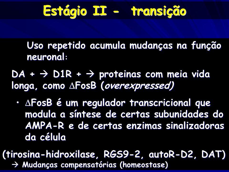 Uso repetido acumula mudanças na função neuronal : DA + D1R + proteinas com meia vida longa, como FosB (overexpressed) FosB é um regulador transcricio