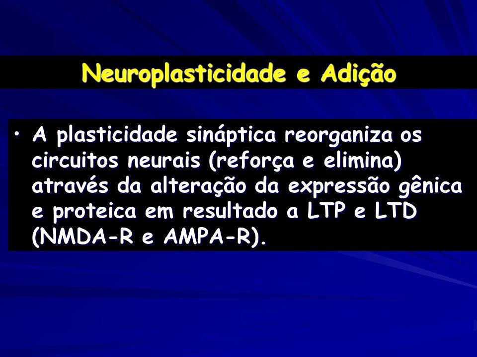 A plasticidade sináptica reorganiza os circuitos neurais (reforça e elimina) através da alteração da expressão gênica e proteica em resultado a LTP e
