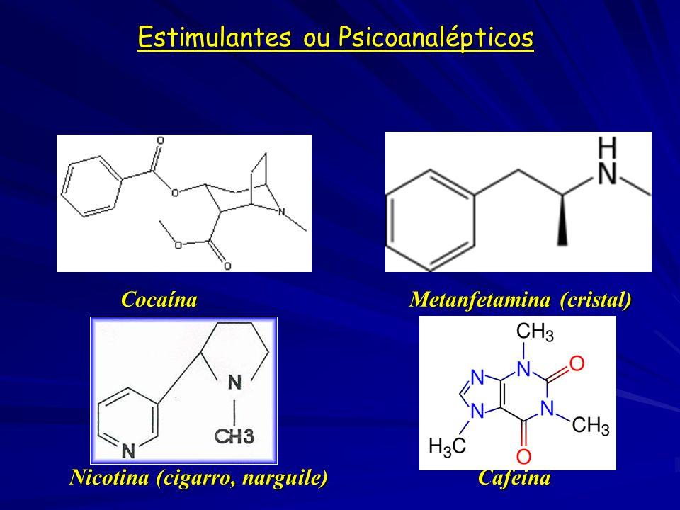 Perturbadores ou Psicodislépticos (Alucinógenos) LSDMescalina LSD MescalinaFenciclidina