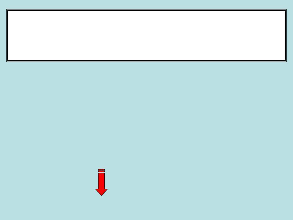 DEMONSTRATIVO DE RESTOS A PAGAR ESTIMADO SALDO DE RESTOS EM 31/12/2012 00,00 (-) PAGAMENTO 1º QUADRIMESTRE 00,00 (=) SALDO A PAGAR DE RESTOS 00,00