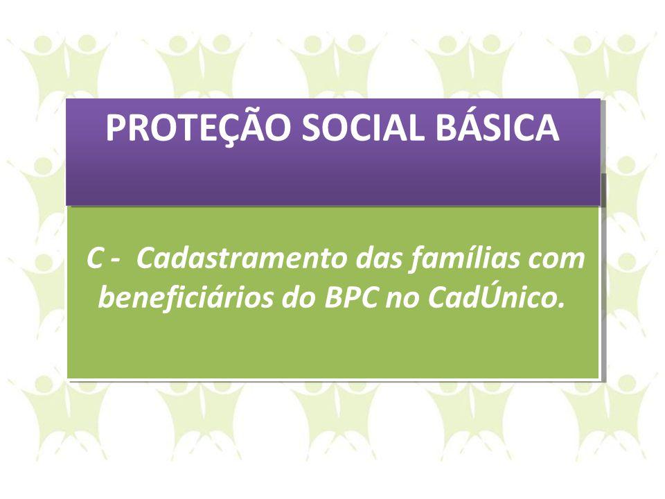C - Cadastramento das famílias com beneficiários do BPC no CadÚnico. C - Cadastramento das famílias com beneficiários do BPC no CadÚnico. PROTEÇÃO SOC