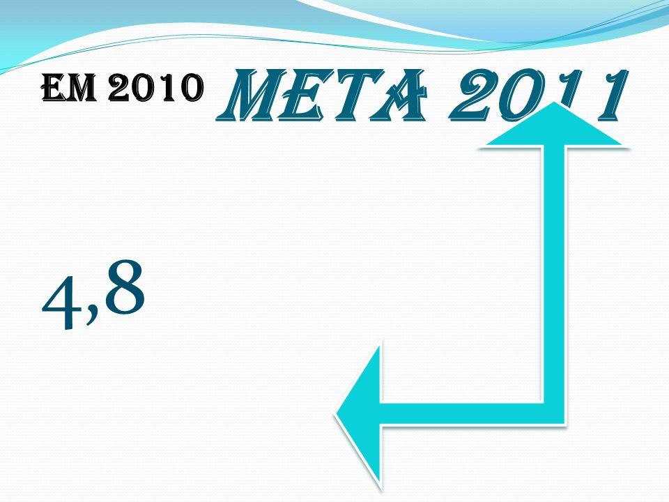 META 2011 Em 2010 4,8